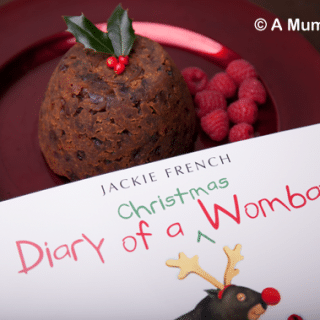 Diary of a Christmas Wombat (children's book review)