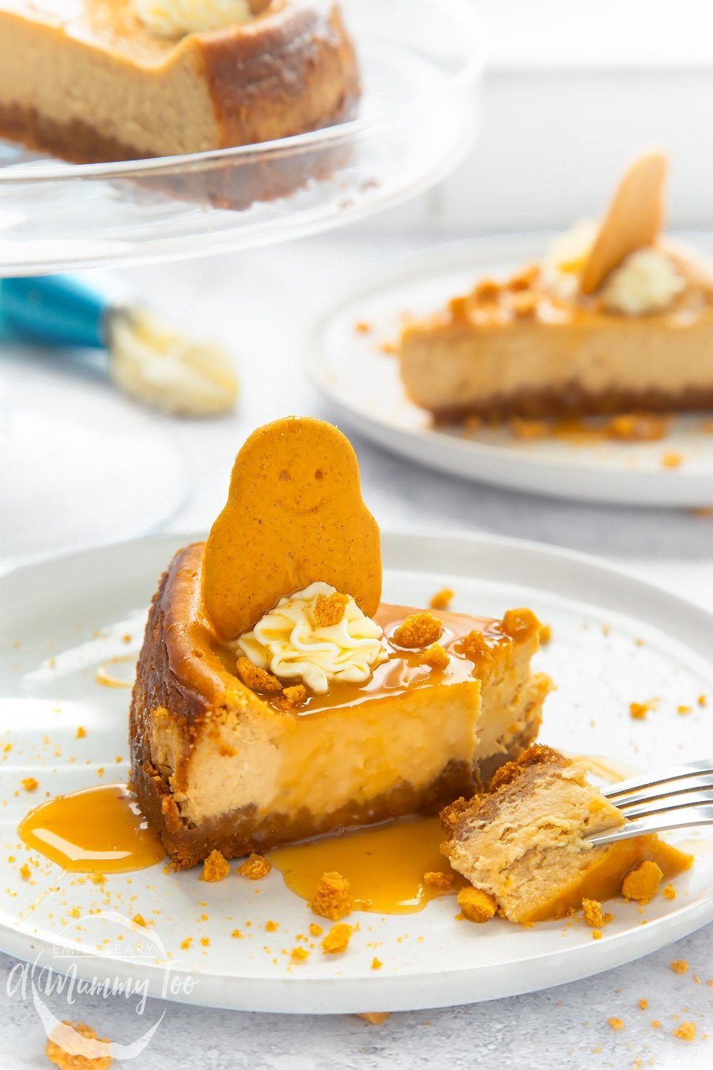 Front angle shot of a Gingerbread cheesecake drizzled with caramel sauce served on a white plate with a mummy too logo in the lower-left corner
