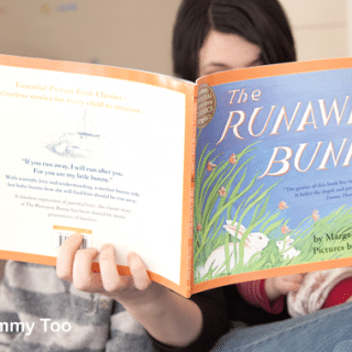 The Runaway Bunny (children's picture book review)