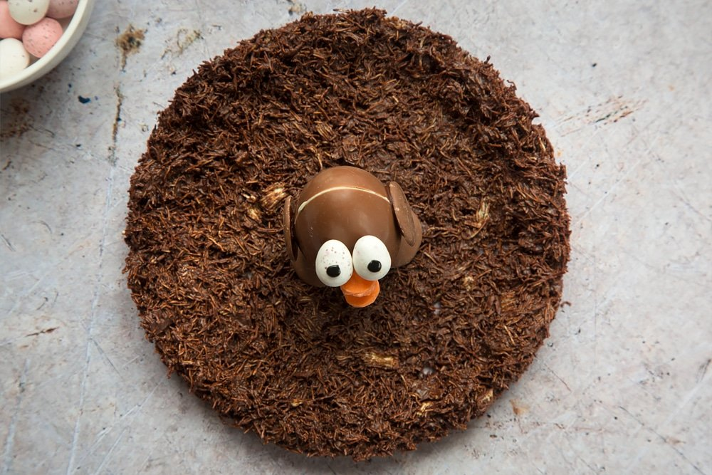 Easter egg chick sat in the middle of the chocolate nest, taken out of the fridge and placed upon a table