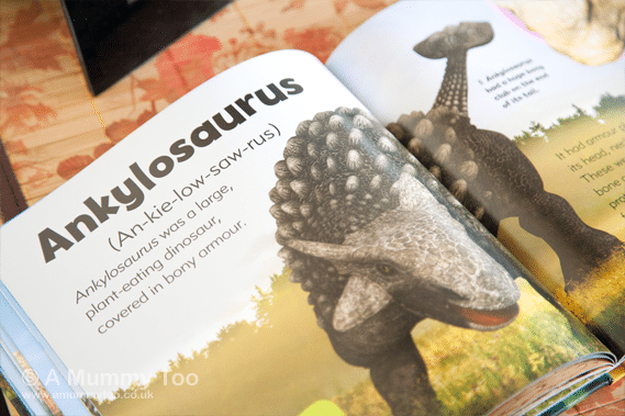 My-little-book-of-dinosaurs-inside