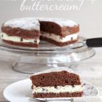 Rich chocolate sponge & mint chocolate chip buttercream