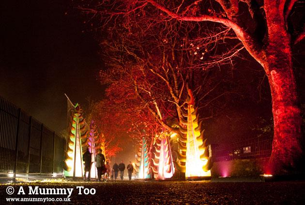 Derry-lights-09