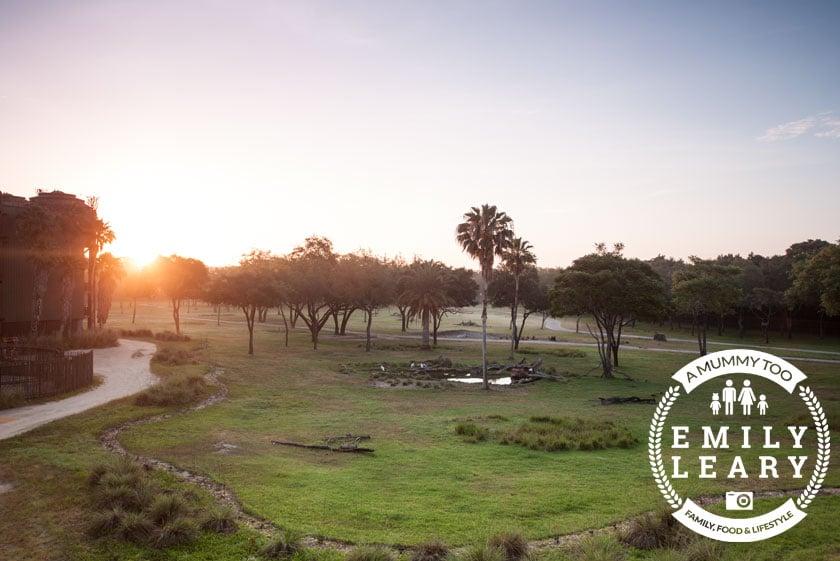 panoramic shot of savannah sunrise at Disney World Animal Kingdom Lodge with a mummy too logo in the lower-right corner