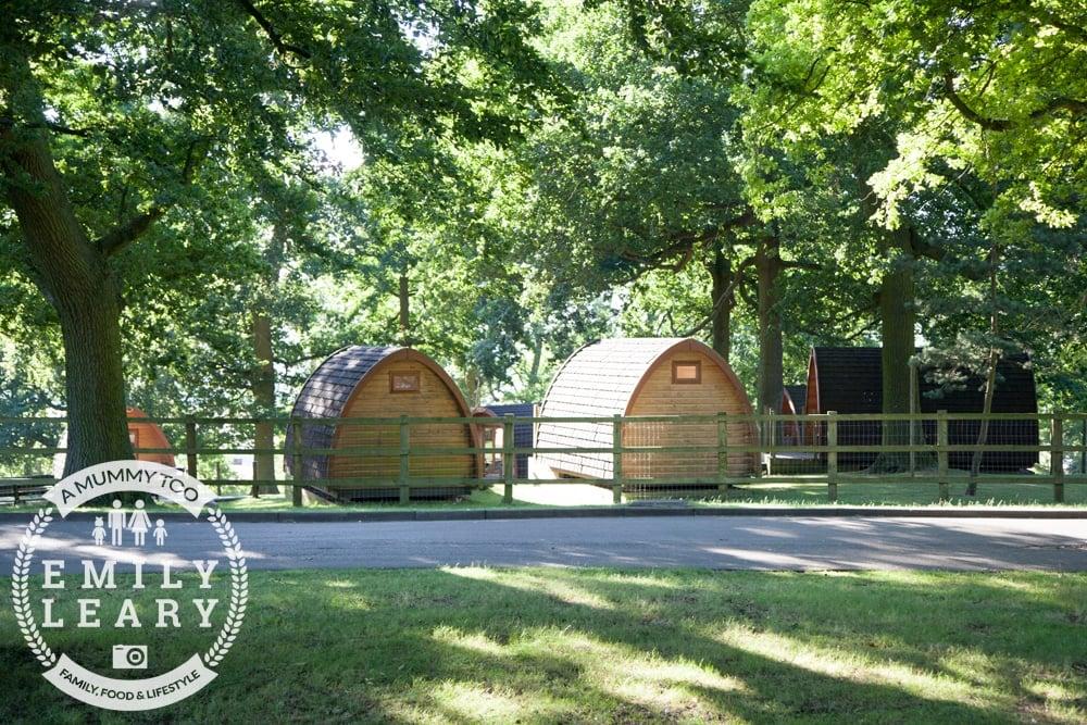 ZSL-Whipsnade-Minions-Frubes-Cabins-6