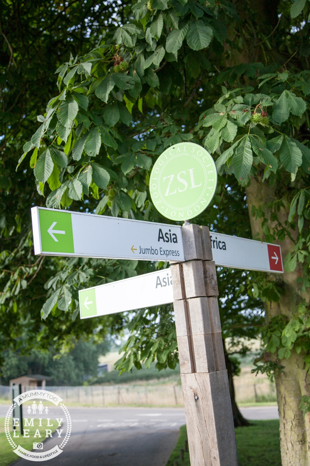 ZSL-Whipsnade-Minions-Frubes-Signage