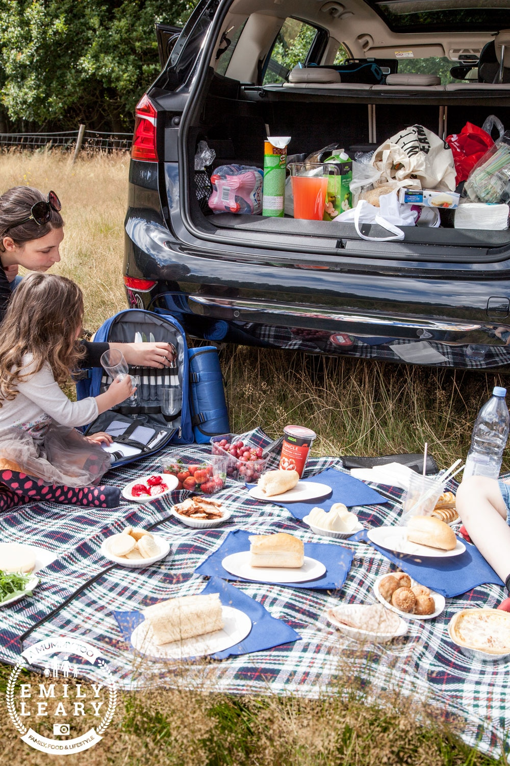 BMW 2 Series Gran Tourer picnic closer