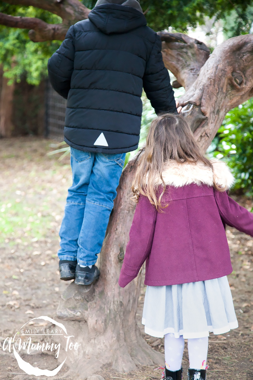 Haagen-Daaz-tree-climbing