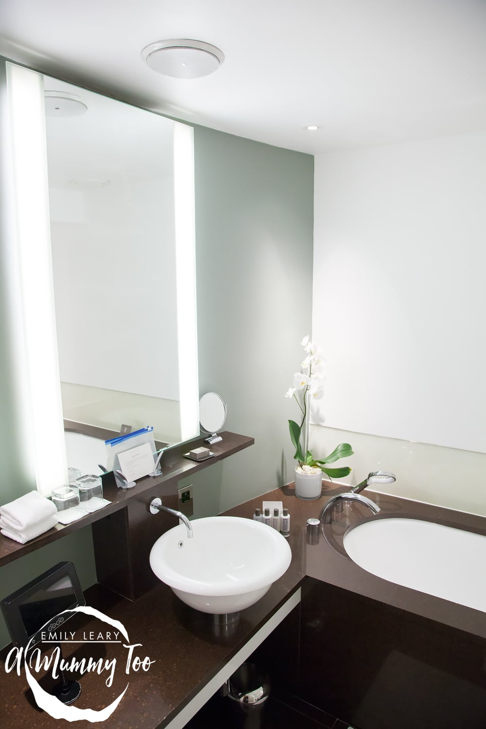 One-Aldwych-hotel-master-bathroom