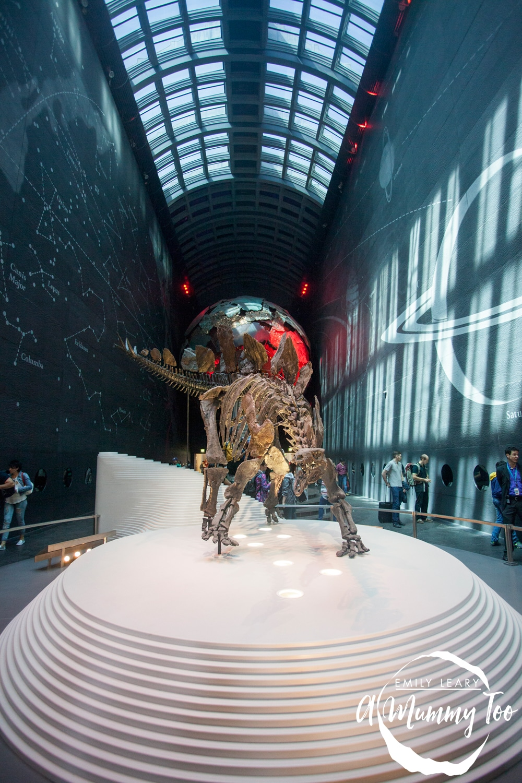 EMT-Natural-History-Museum_5045