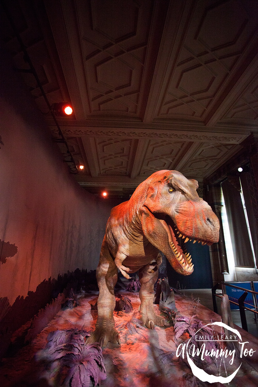 EMT-Natural-History-Museum_5110
