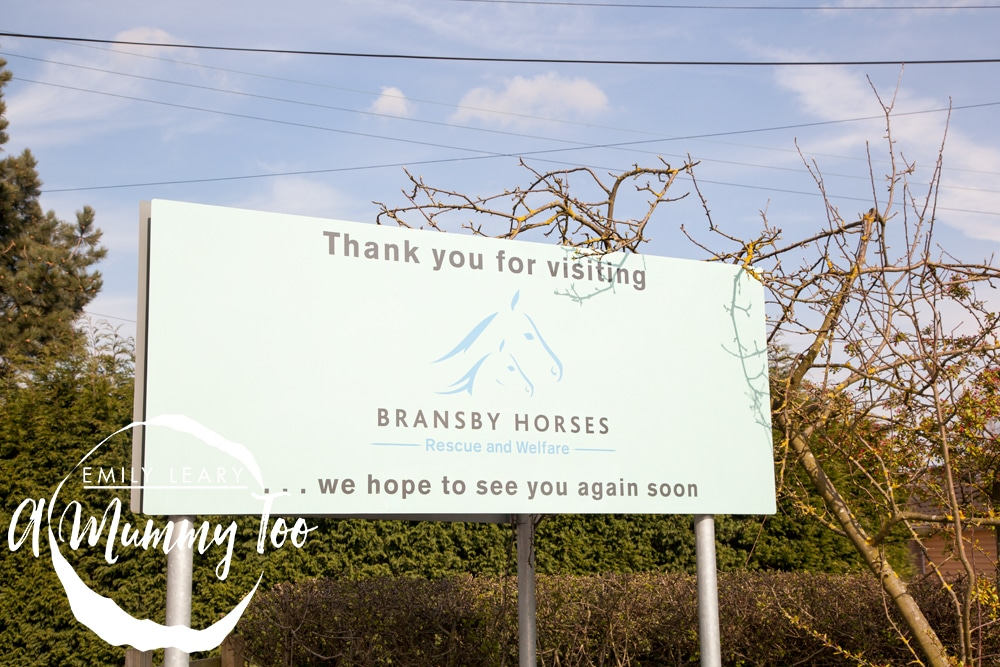Leaving-bransby