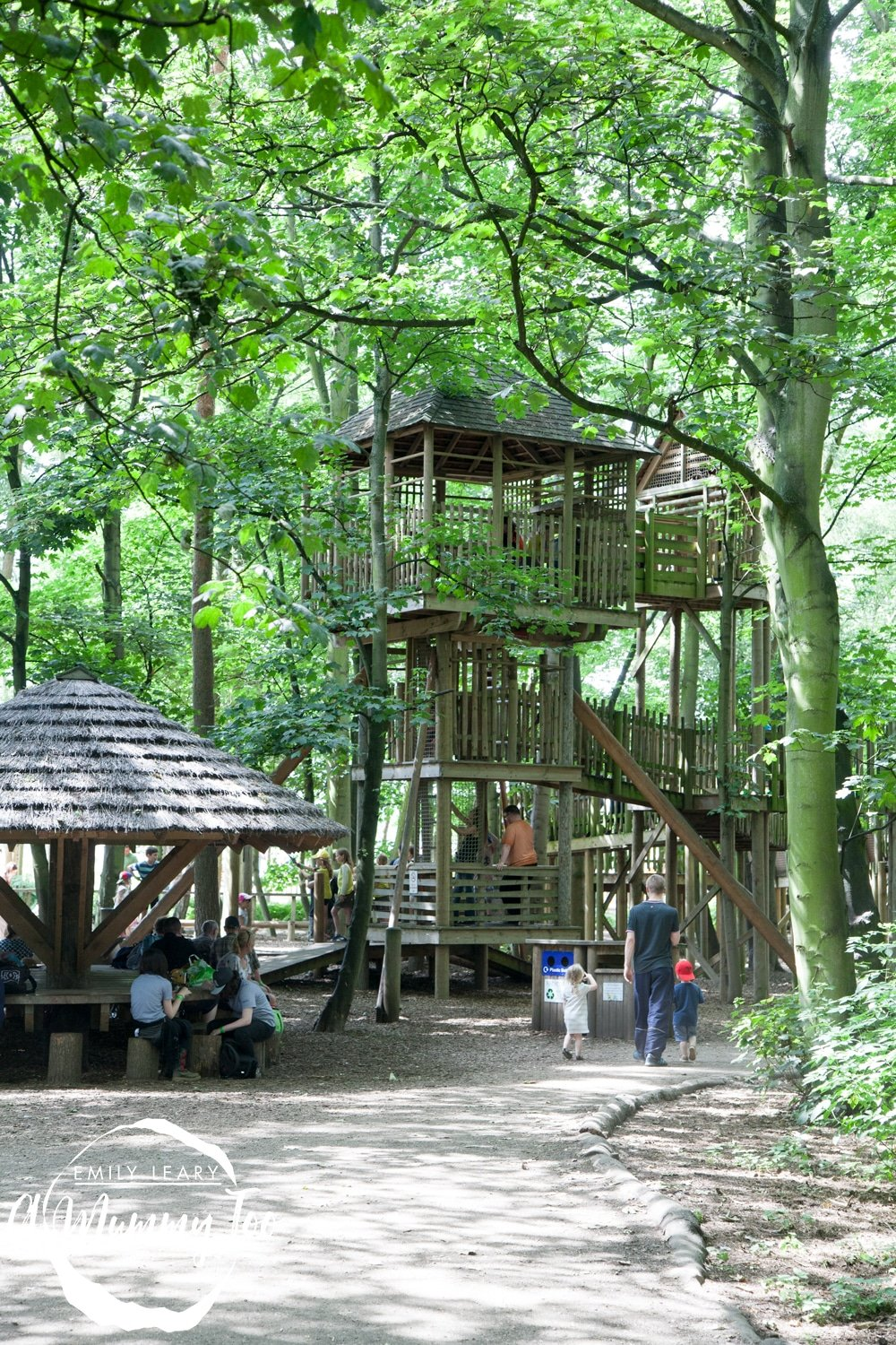 wildlife-park-wood-play-park