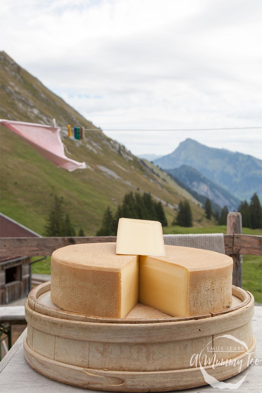 rupp-austria-visit-65
