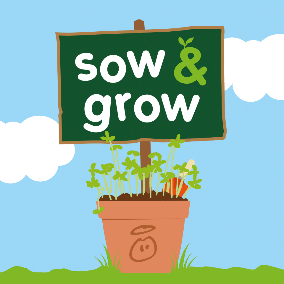 innocent Sow & Grow