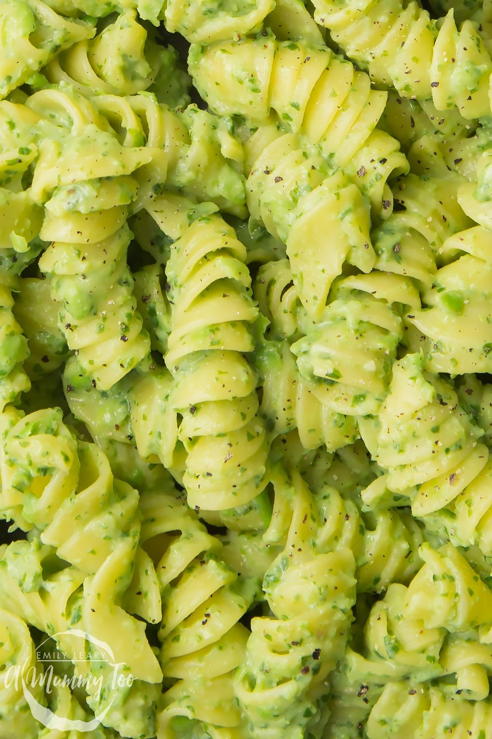 Close up of pasta coated in green pasta sauce