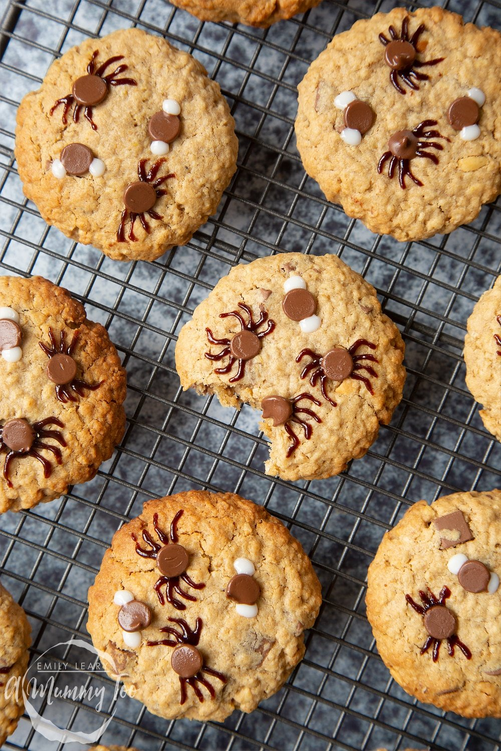 Halloween peanut butter spider cookies arranged on a metal cooling rack. The cookies are decorated with chocolate chips and icing to resemble spiders and flies. One cookies has a bite out of it.