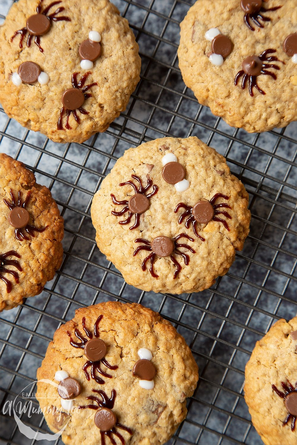 Halloween peanut butter spider cookies cooling on a wire rack. The chocolate chips that are visible have spider legs or fly wings painted on them.