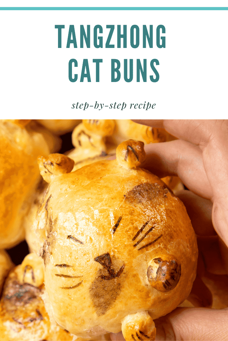 A close up of a tangzhong bread bun, shaped to look like a kitten, being held by a hand