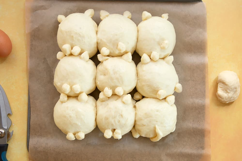 9 cat shaped tangzhong bread rolls, proved on a tray lined with baking paper.