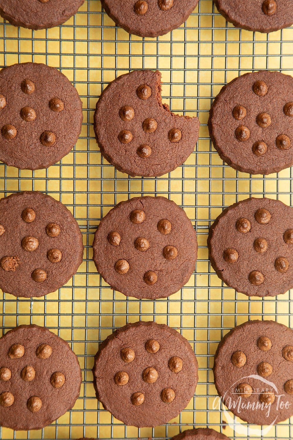 Close up shot of Chocolate shortbread cookies with chocolate chips cooling on a wire rack. One cookie has a bite out of it.