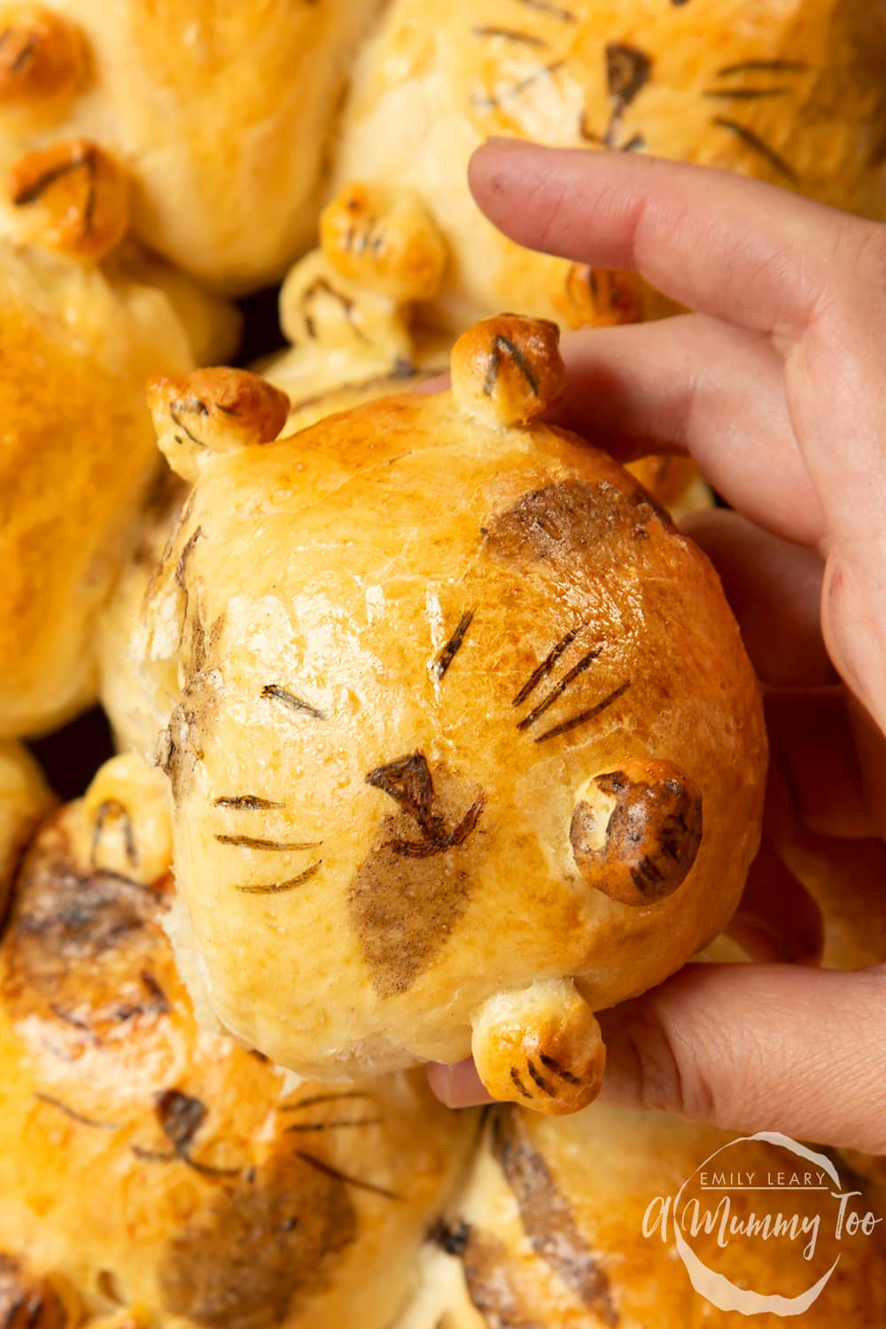 Kim-Joy's Tangzhong Cat Buns - close up of one bun, showing a happy cat with closed eyes made from bread