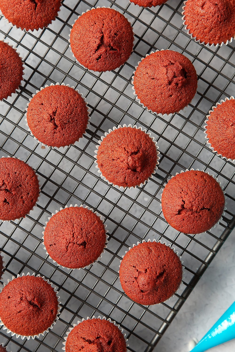 Overhead shot of the mini red velvet cupcakes cooling on a wire rack.