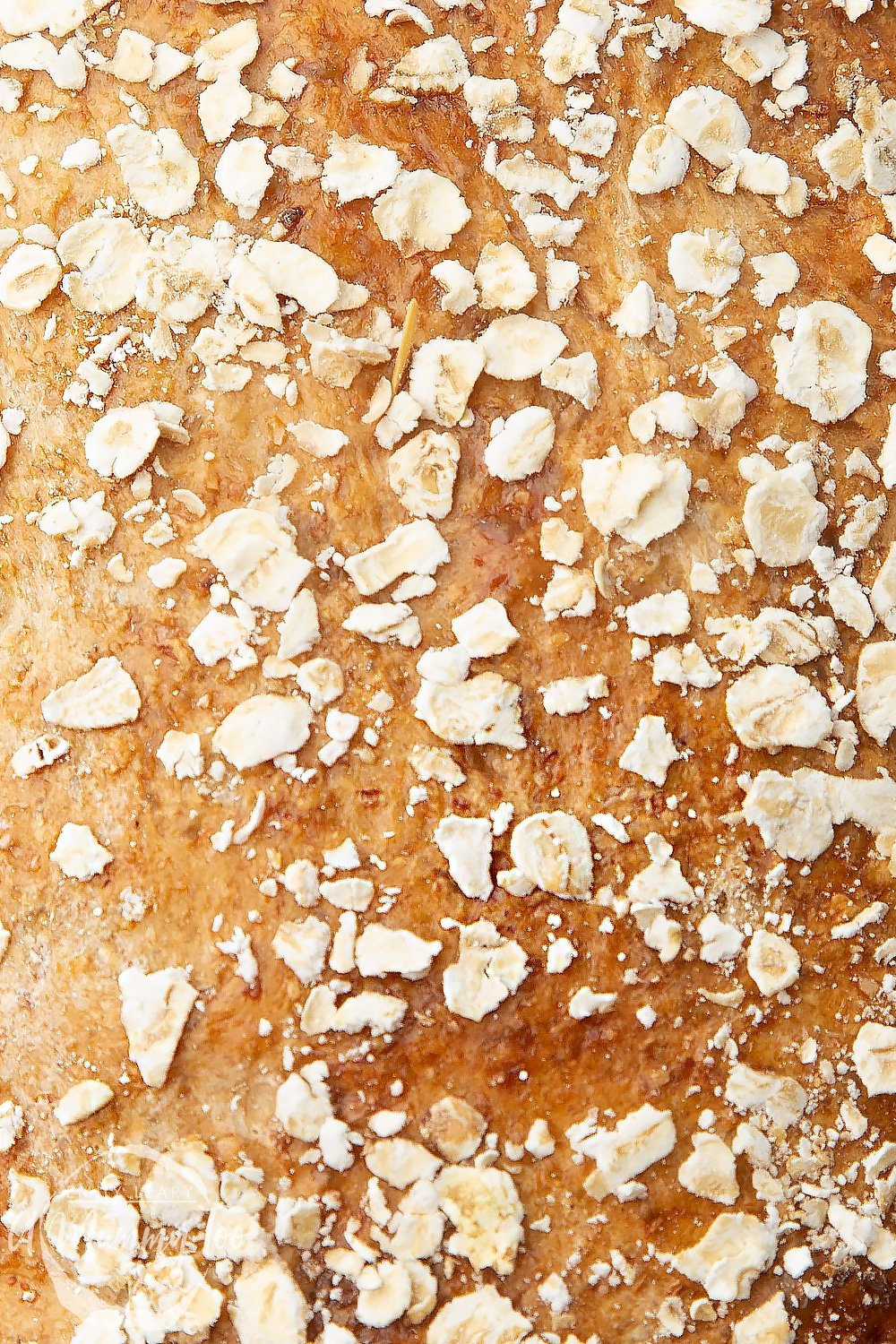 close-up shot of honey and oat bread