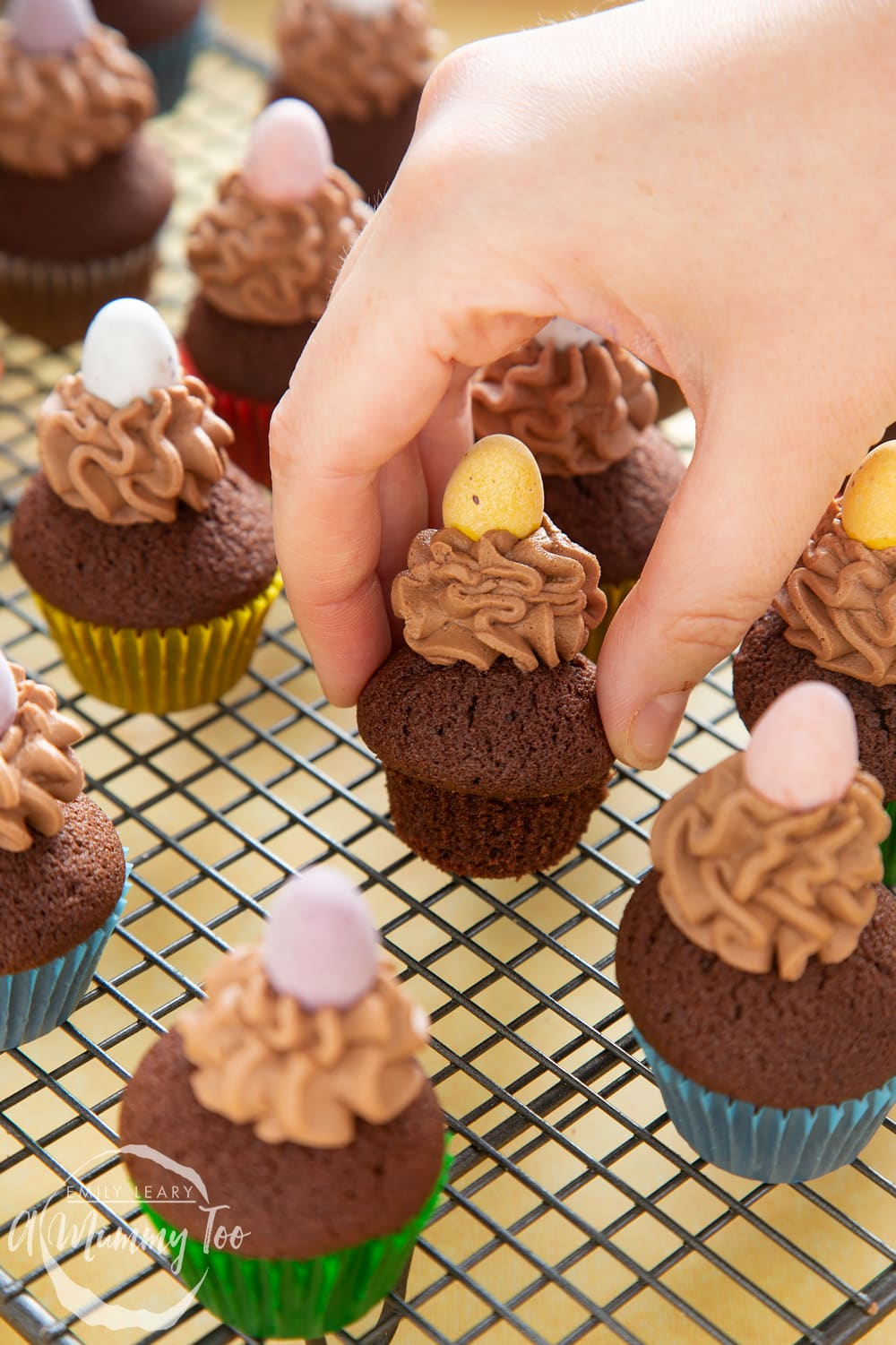 front angle shot of a hand holding a chocolate muffin topped with chocolate frosting on a baking rack with a mummy too logo in the lower-left corner