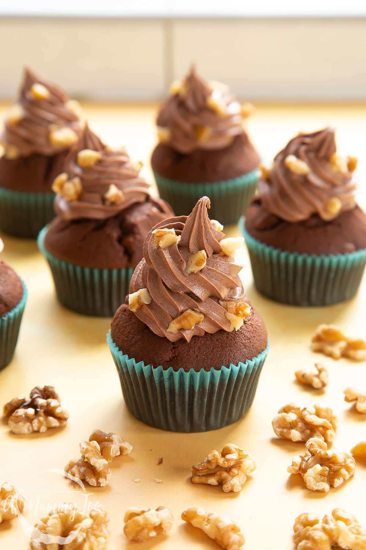 Chocolate walnut cupcakes decorated with creamy chocolate frosting. Walnuts are scattered around the cupcakes.