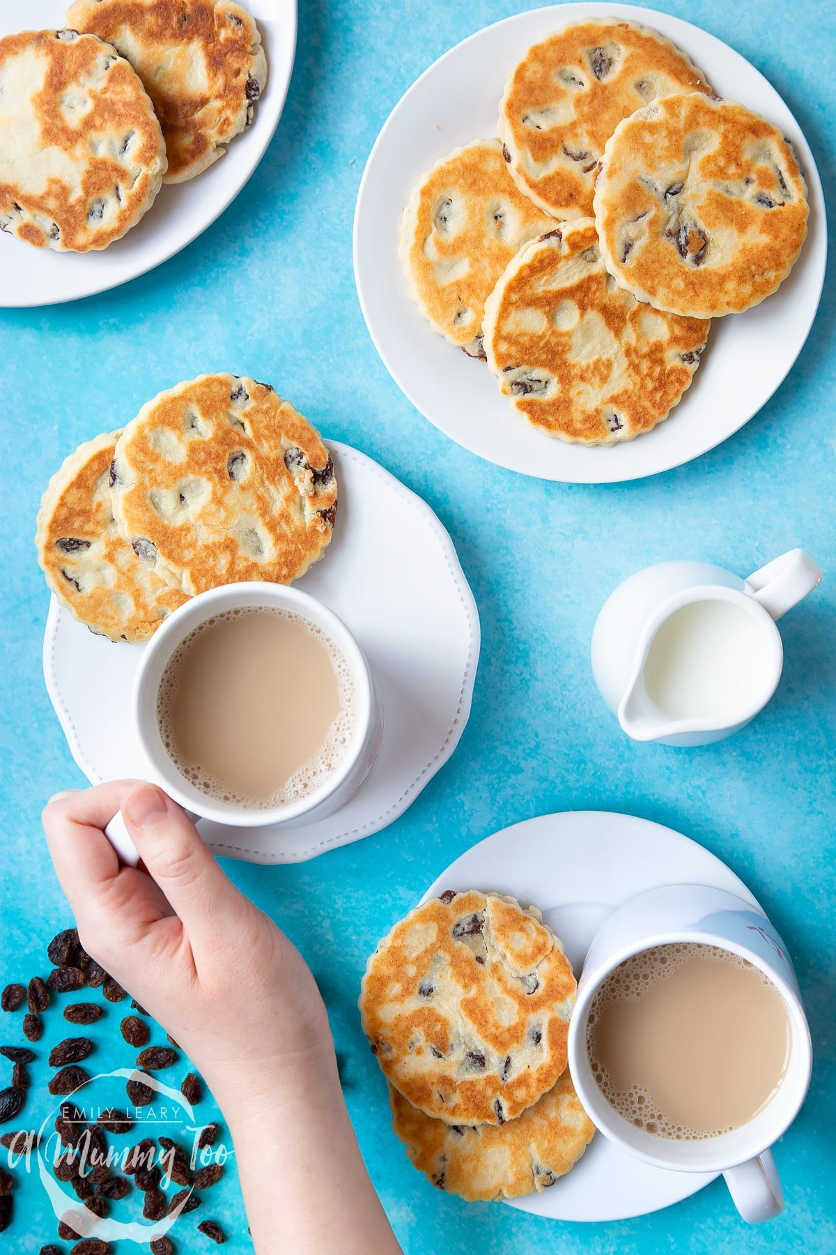 Welsh cakes on a number of white plates with cups of tea. A small jug of milk sits to one side by a scattering of sultanas. A hand reaches in to take a cup of tea.