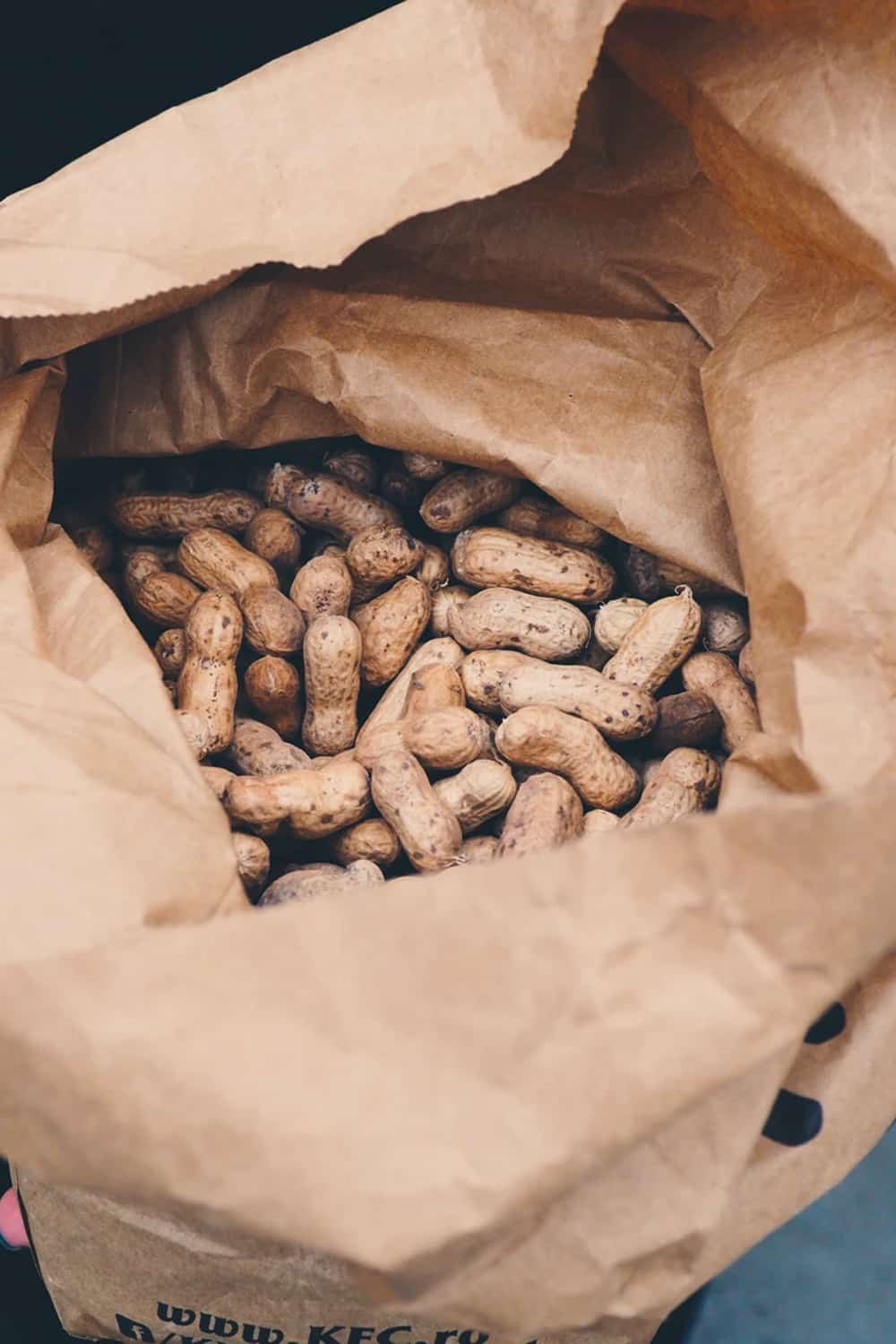 Peanuts in their shells in a large brown paper bag.