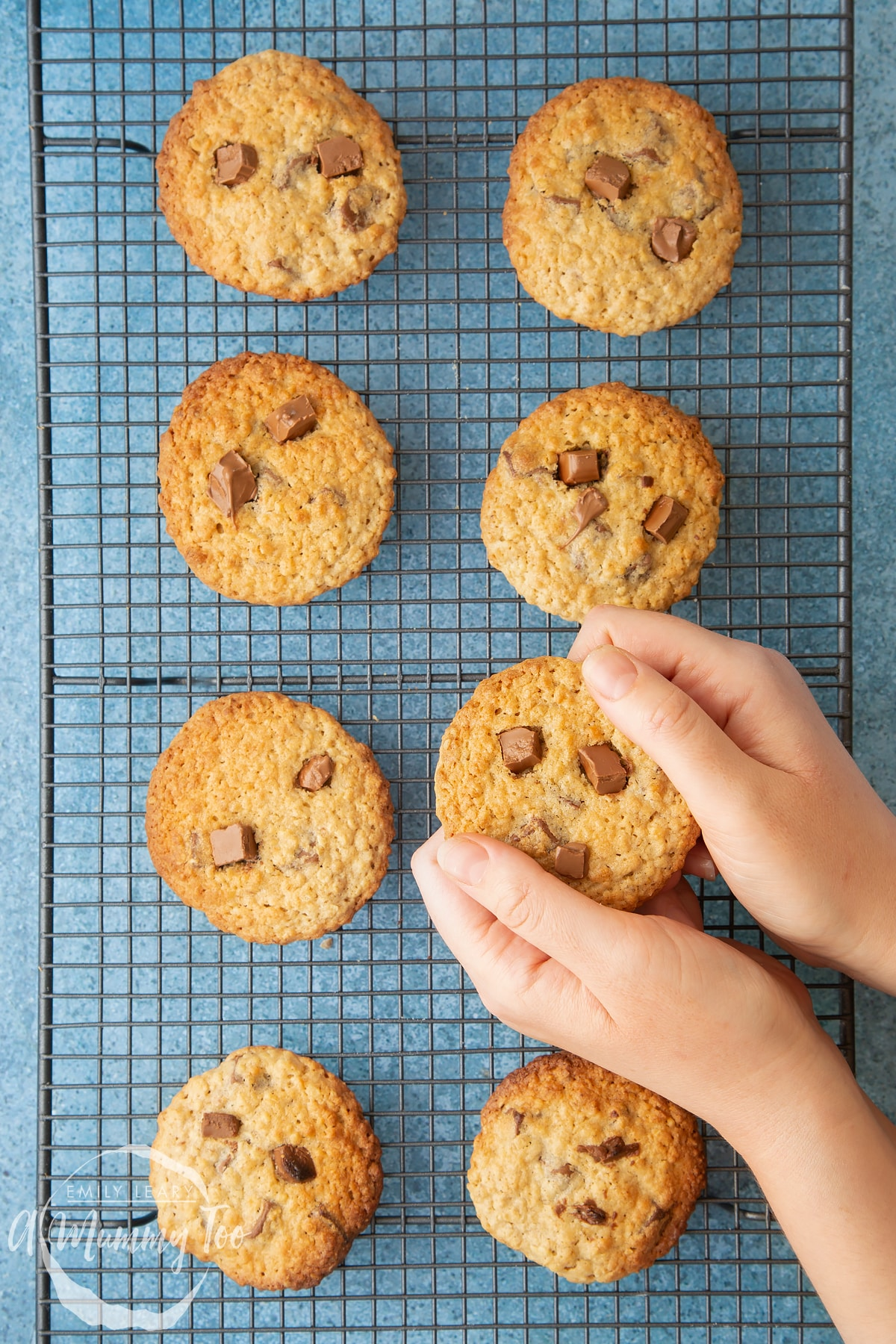 Hands breaking an oatmeal chocolate chip cookie. More cookie monster cookies are on a wire rack.
