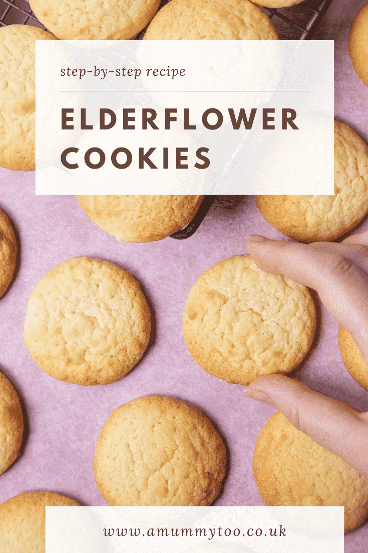 Overhead shot of the elderflower cookies on a pink counter top with a hand reaching in to pick one of the cookies up.