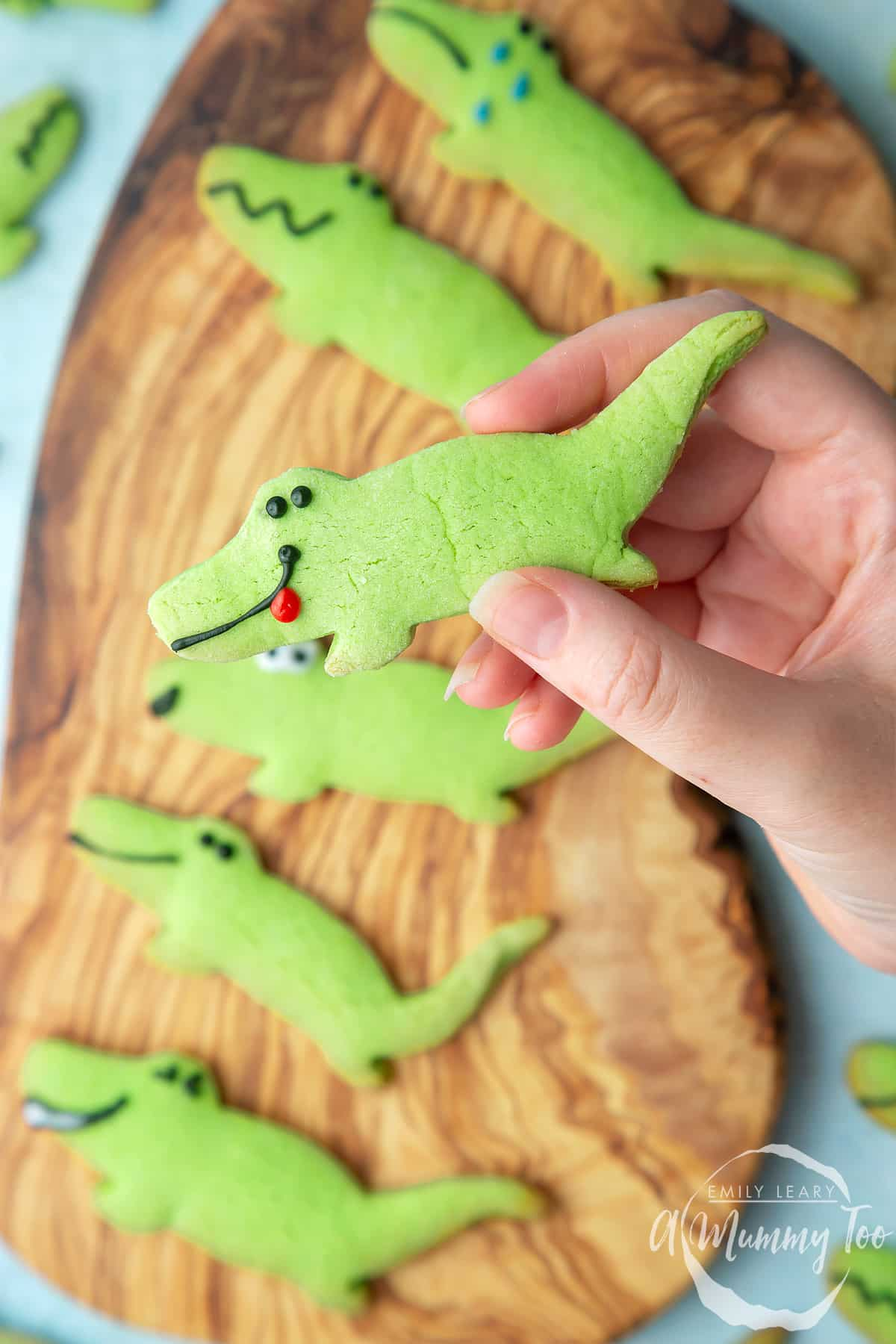 Overhead shot of a hand holding a Crocodile cookie with a mummy too logo in the lower-right corner
