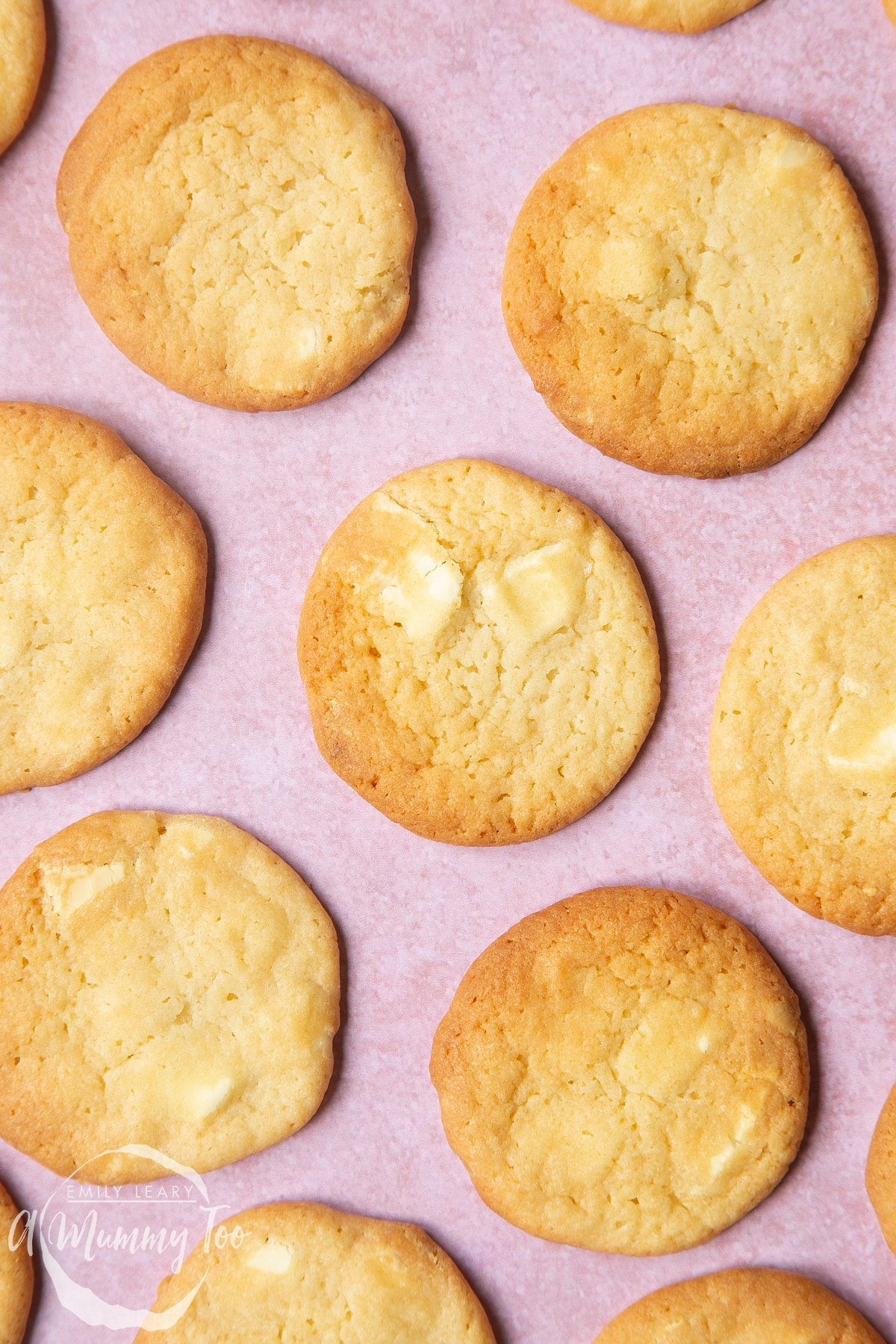 Overhead shot of the baked white chocolate chip cookies on a pink surface.