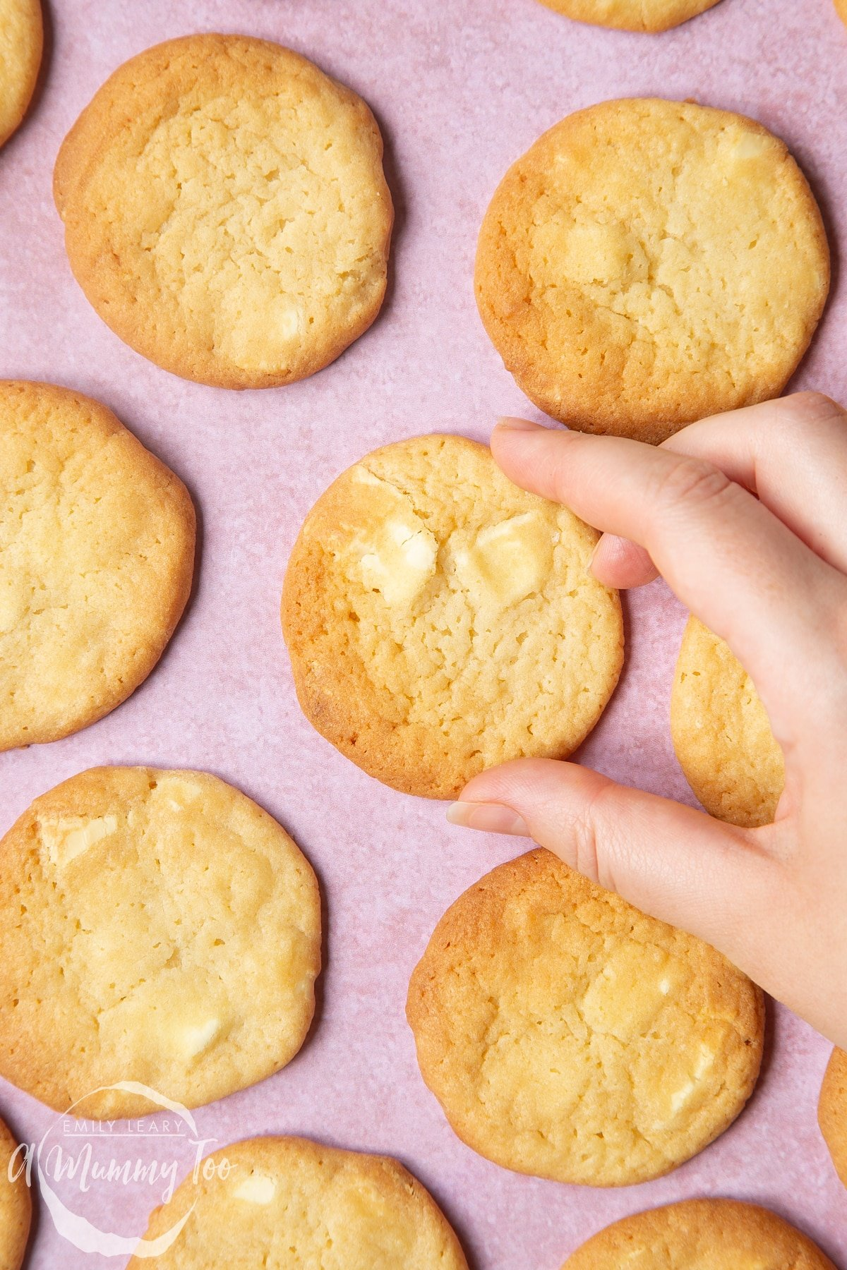 Overhead shot of a hand going in to pick up one of the white chocolate chip cookies.