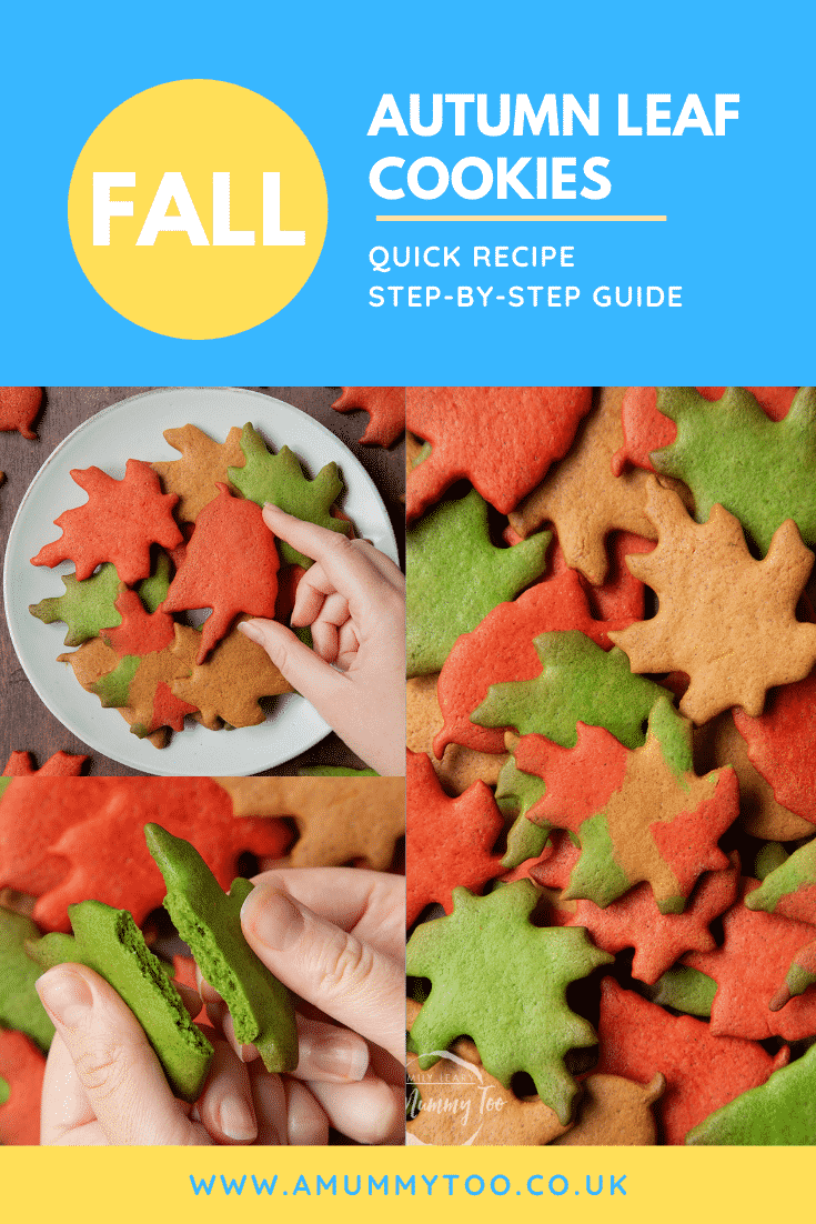 Collage of images of colourful red, green and brown autumn cookies cut into the shapes of autumn leaves. Caption reads: FALL Autumn leaf cookies. Quick recipe. Step-by-step guide