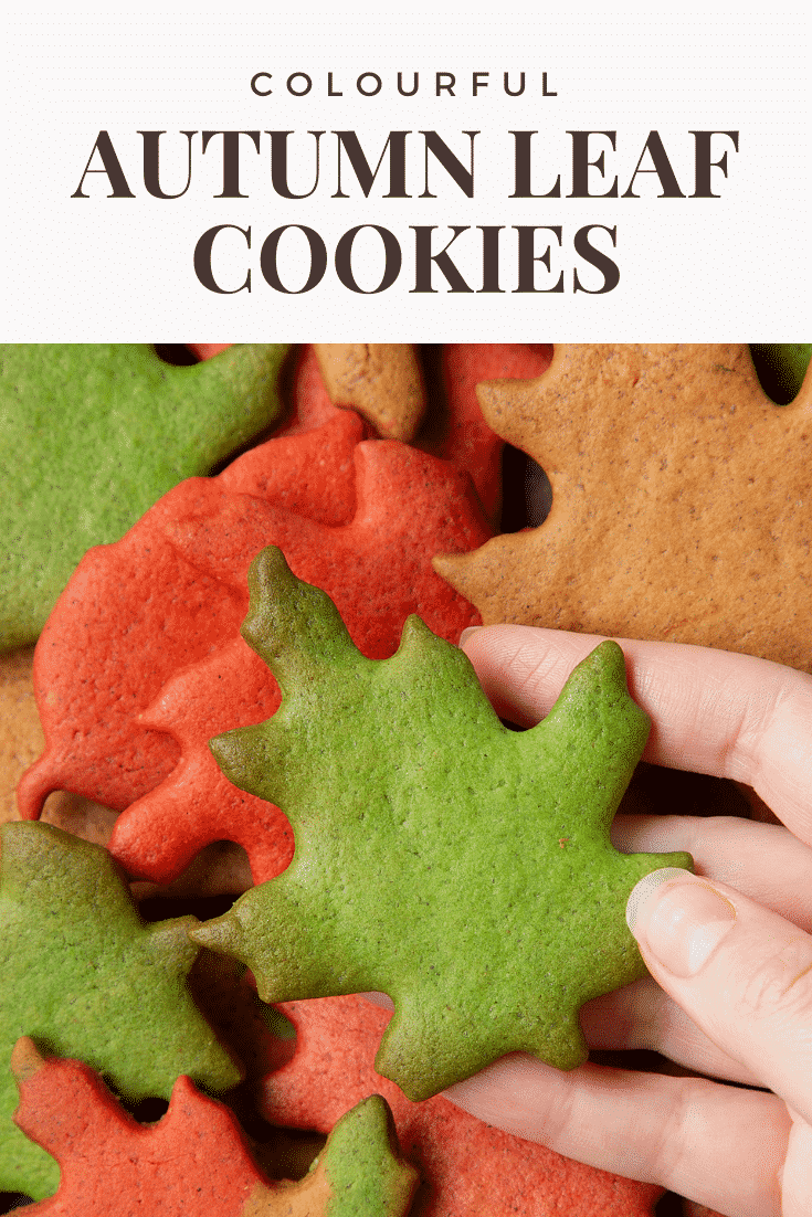 Hand holding a green autumn biscuits above a pile of red, green and brown autumn cookies cut into the shapes of autumn leaves. Caption reads: colouring autumn leaf cookies