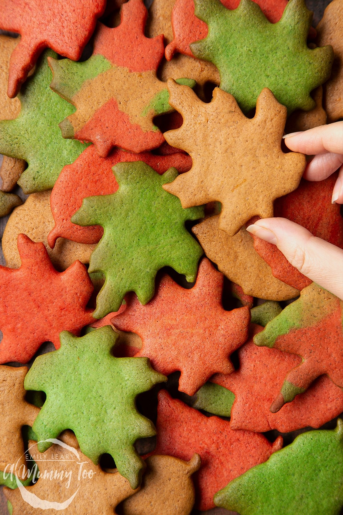 A pile of colourful red, green and brown autumn cookies cut into the shapes of autumn leaves. A hand reaches to take one.