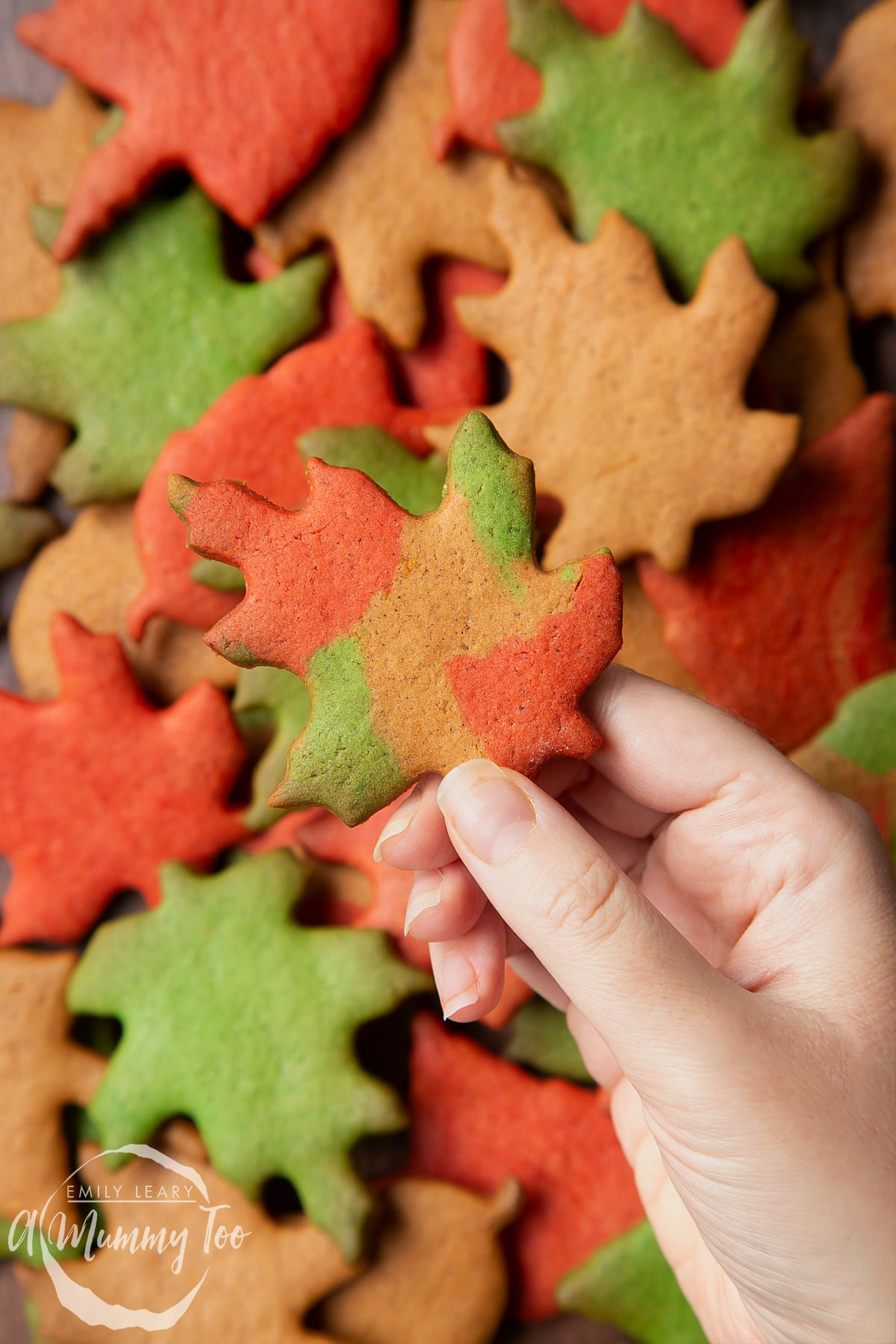 A pile of colourful red, green and brown autumn cookies cut into the shapes of autumn leaves. A hand holds a multicoloured one.