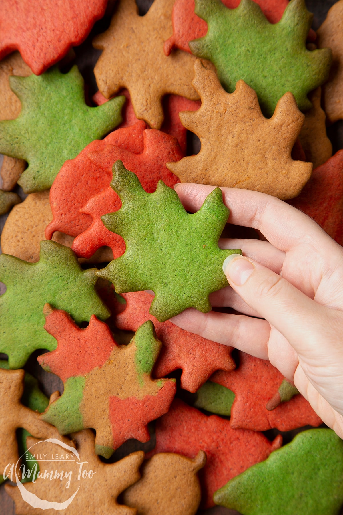 A pile of colourful red, green and brown autumn cookies cut into the shapes of autumn leaves. A hand hols a green leaf.