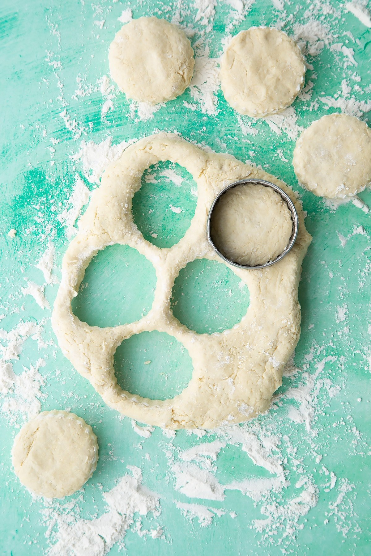 Dairy free scone dough pressed and cut into rounds on a floured surface.