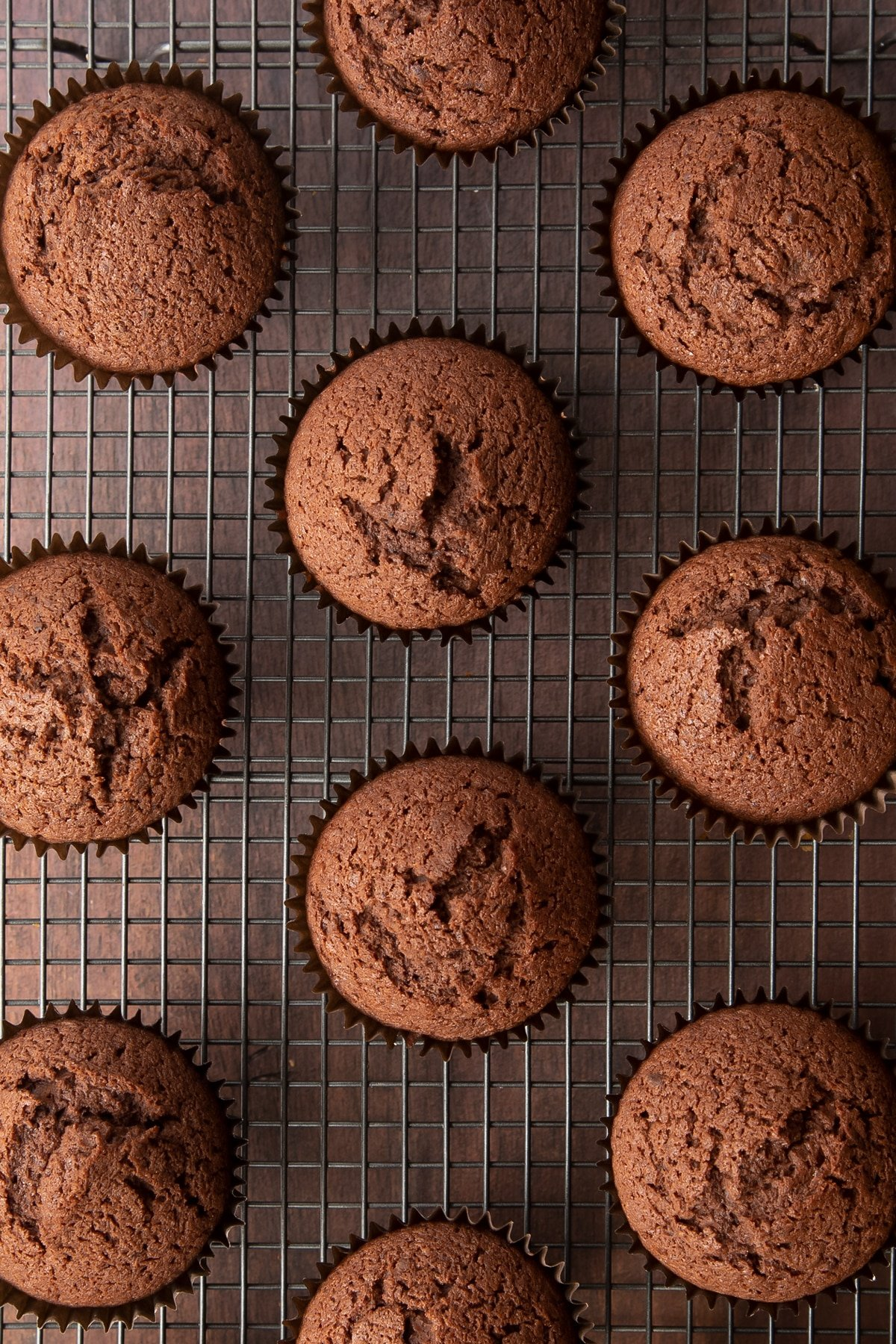Baileys chocolate cupcakes. Shown from above on a wire cooling rack.